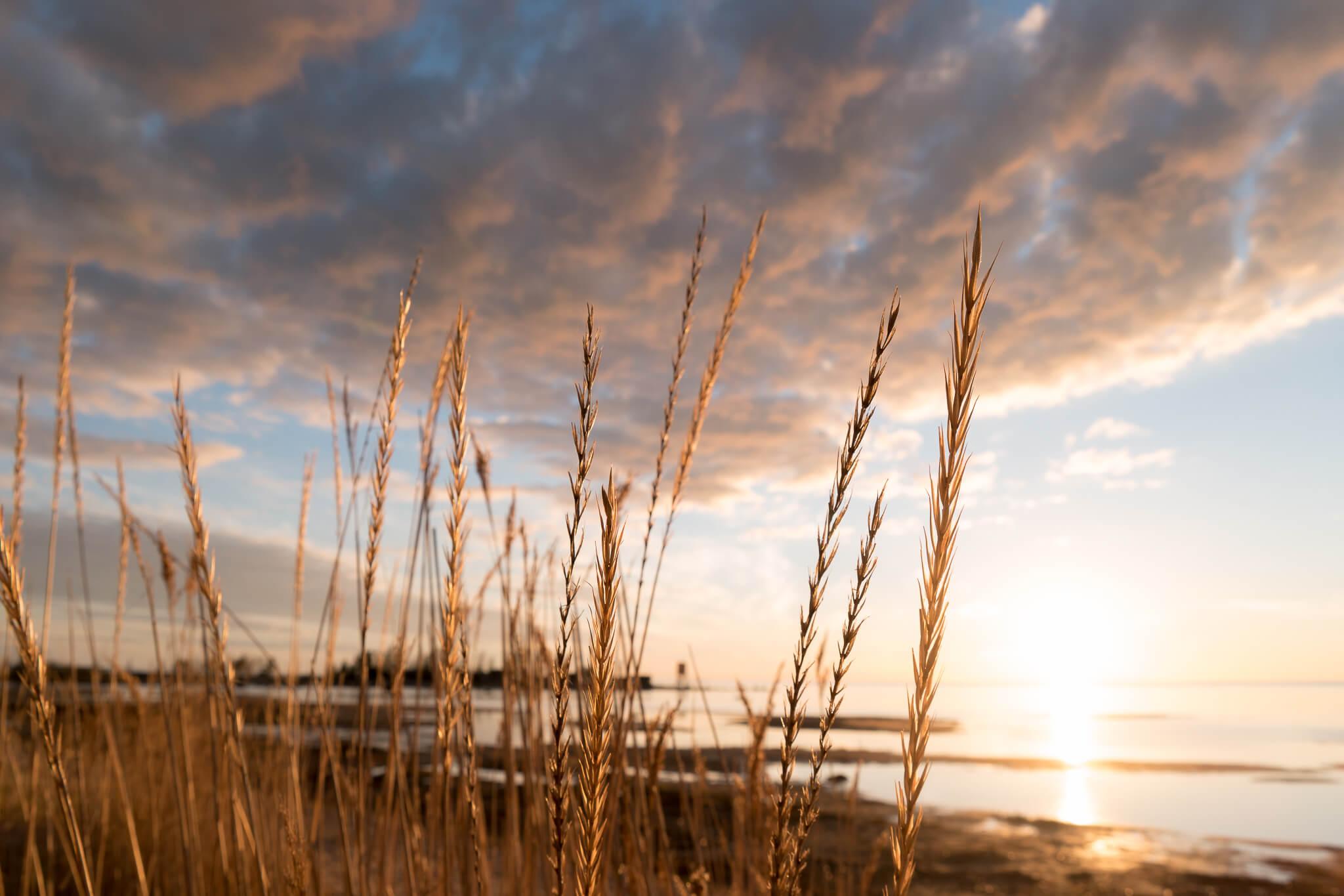 Maisemakuvaus Kalajoki